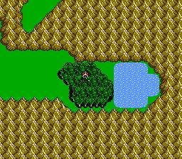 FFIII NES Chocobo Woods 10