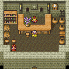Baron's Item Shop (GBA).