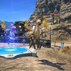 Chocobo Racing.