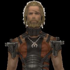Basch's model when dressed in pilfered armor.