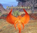 Feuerelementar