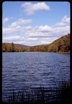 Waneta lake, New York