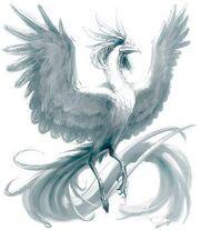 161385-white phoenix by kezrek super