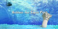 Baldwin the Super Fish/Gallery