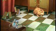 Kitty Pointer