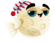 Fish-with-Attitude-Moon-Fish-Adult