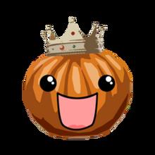 Prince the pumpkin pet