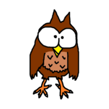 Pet brown owl