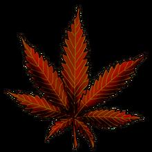 Cannabis four way