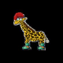 Pet pocket giraffe