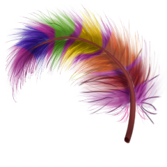File:Fabulous feather.png