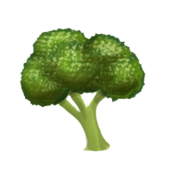 File:Broccoli.png