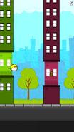 Citybirdmiddle
