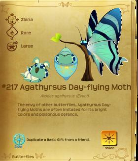 Agathyrsus Day-flying Moth§Flutterpedia