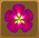 Rama-rama Set§AF 100%