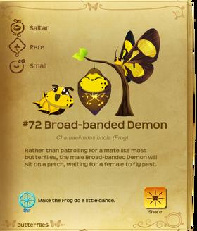Broad-banded Demon§Flutterpedia