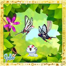 Quetzal Set§Facebook