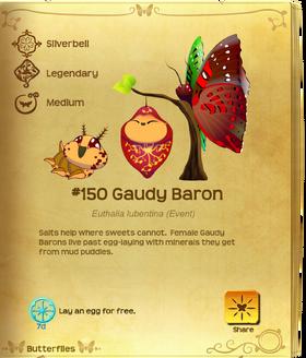 Gaudy Baron§Flutterpedia
