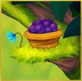 Madagascar Pygmy Kingfisher§NookDecoration Berries