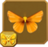 Orange Skipperling§Headericon
