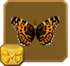Map Butterfly§Headericon
