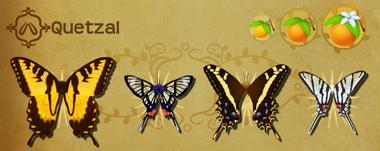 Quetzal Set§Flutterpedia