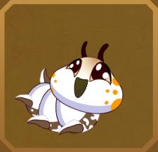 Chequered Lancer§Caterpillar
