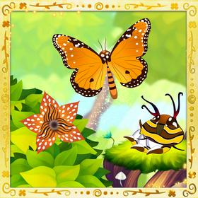 Queen Butterfly§Facebook