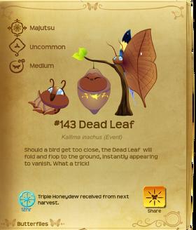 Dead Leaf§Flutterpedia