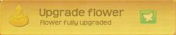 Button§UpgradePollenFlower NA FullyUpgraded