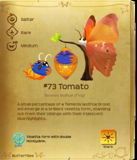 Tomato§Flutterpedia