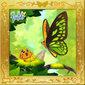 Wallace's Golden Birdwing§Facebook