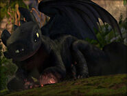 Toothless laying on fire