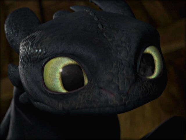 File:Toothless staring at Hiccup.jpg