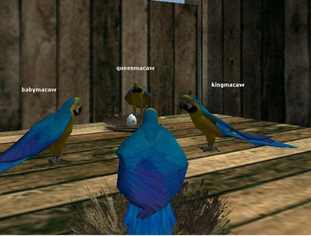 File:Group3 macawkingdom.png