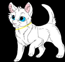 Cute kitten template by kasarawolf-d4yekwo