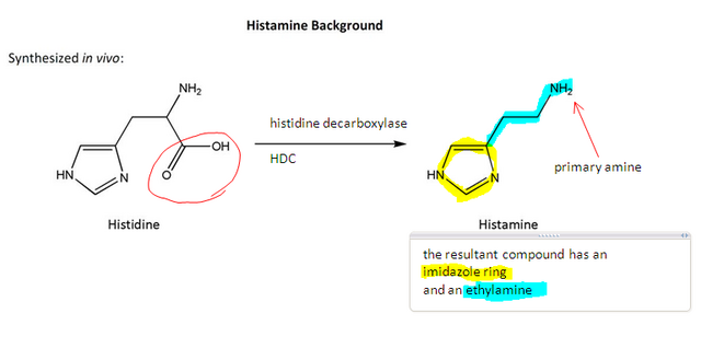 File:Histamine synthesis.png