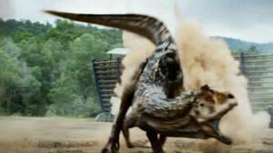 File:Carnotaurus Sasteri.jpg