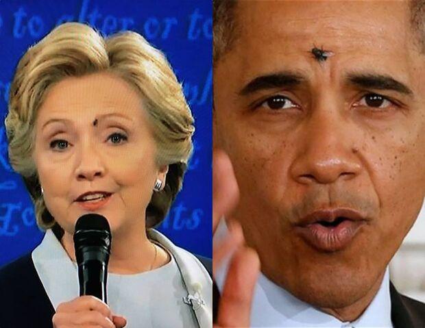 File:Obama Clinton Fly.jpg