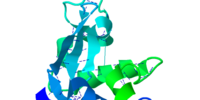 Turkey Egg Lysozyme