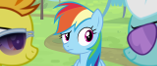 File:640px-Spitfire and Fleetfoot looking at each other while Rainbow is looking at them S4E10.png