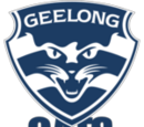 Team:Geelong (AFL)