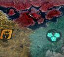 The Faction War