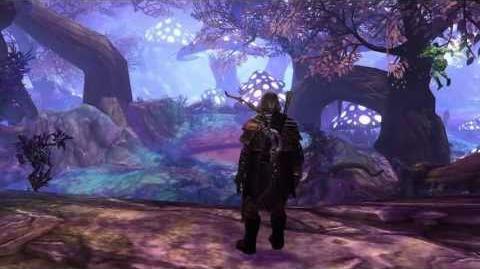Neverwinter Sprite Companion Trailer