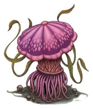 File:Violet fungus.jpg