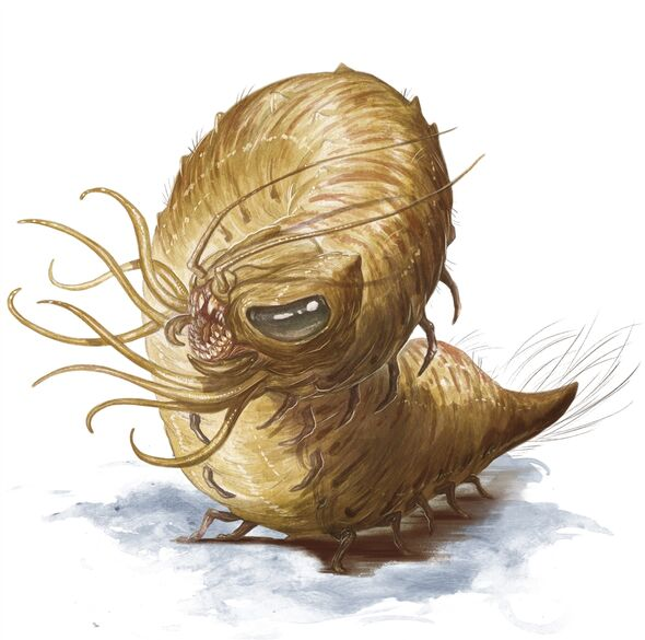 File:Monster Manual 5e - Carrion Crawler - p37.jpg