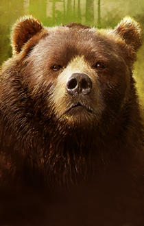 File:Wilson the Bear.png