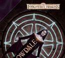 Shadowdale (novel)
