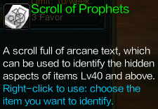 ItemScrollofProphetsDescription