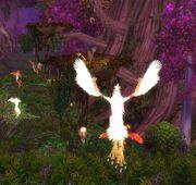 Harpyen17092012.jpg